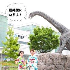 画像6: 恐竜帯留め「フクイティタン」 (6)